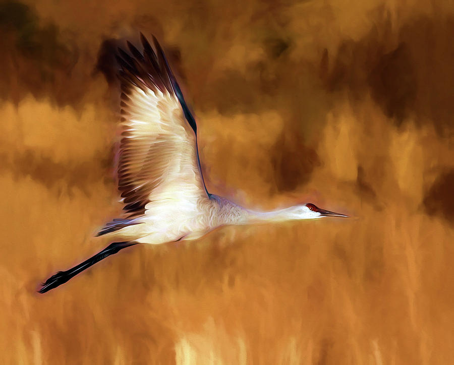 Painterly Crane by Scott Bourne