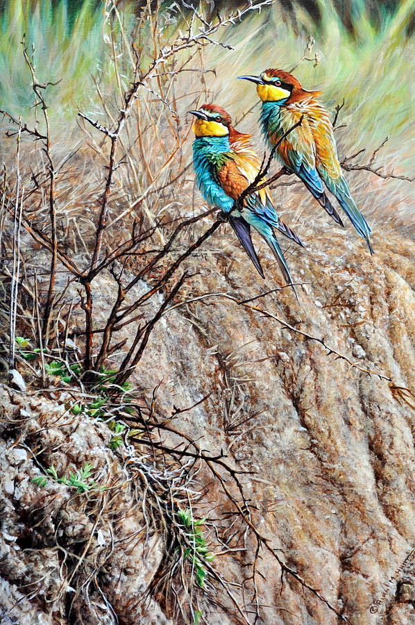 Pair Of Bea Eaters By Alan M Hunt Painting