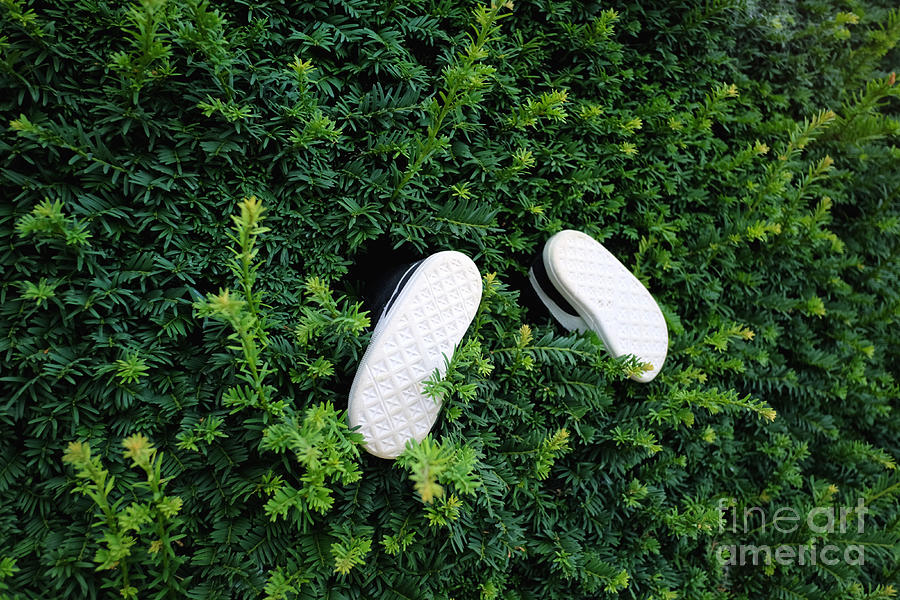 Pair Of Small Shoes Sticks Photograph by Stanislaw Pytel