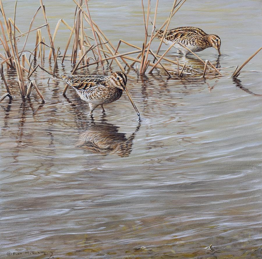 Snipe Painting - Pair of Snipe by Alan M Hunt by Alan M Hunt