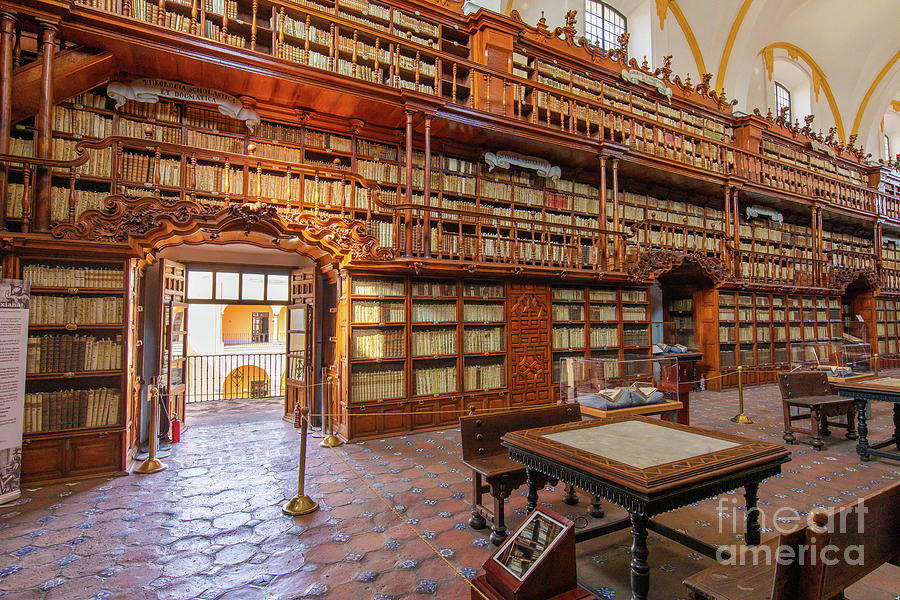 Mexican Photograph - Palafoxiana Library by Inge Johnsson