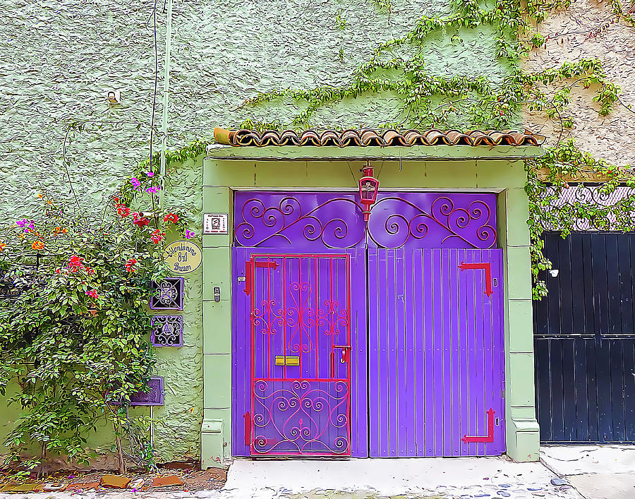 Pale Green Wall and Purple Door by Douglas J Fisher