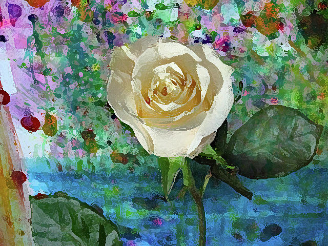 Pale Yellow Rose by Corinne Carroll