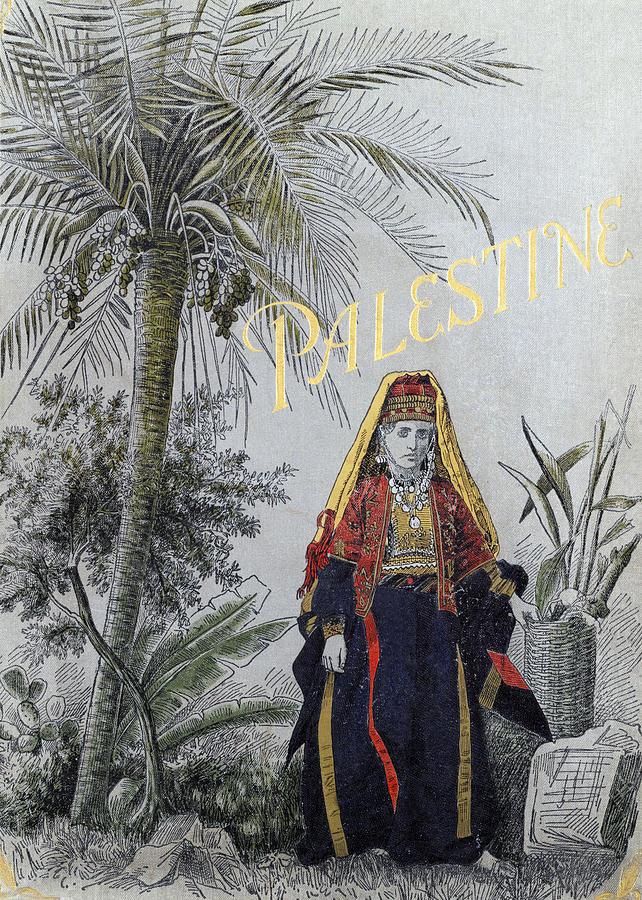 Palestine And Palm Tree Photograph