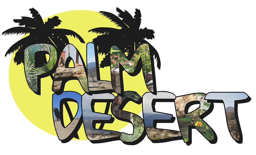 Palm Desert Photograph - Palm Desert Large Letter With Moon by Colleen Cornelius