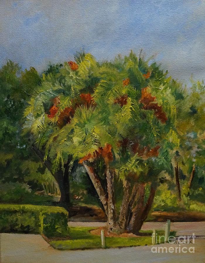 Palm in Millennium Garden by Barbara Moak