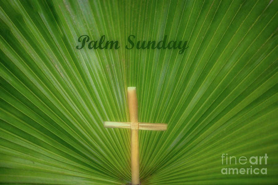 Palm Sunday by Dale Powell