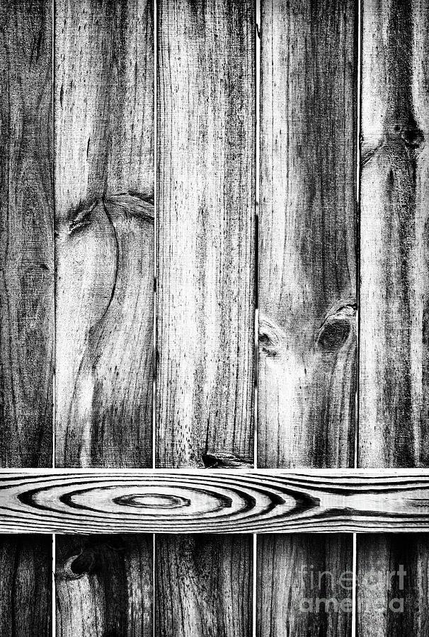 Dancing Palm Tree by Karen Adams