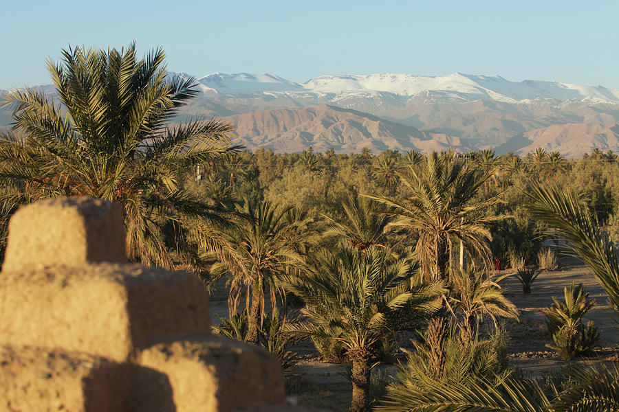 Palm Trees, Mountains And Kasbah Photograph by Edenexposed
