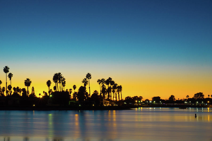Palms of De Anza Cove, Mission Bay by Richard A Brown