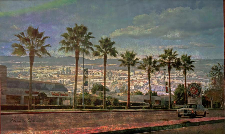 Palms out West by Bonnie Willis
