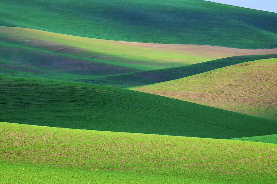 Palouse Abstract by Rick Berk
