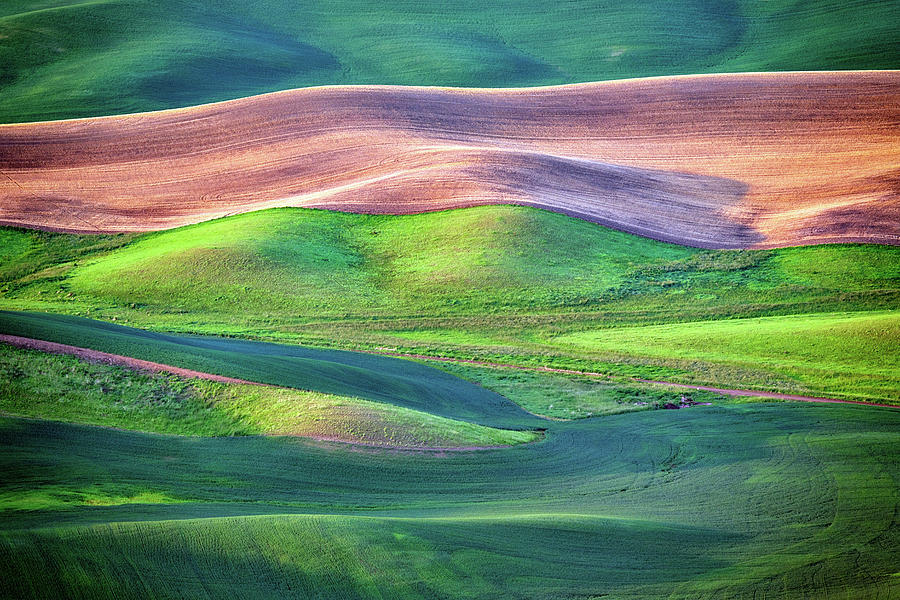 Palouse Undulation by Rick Berk