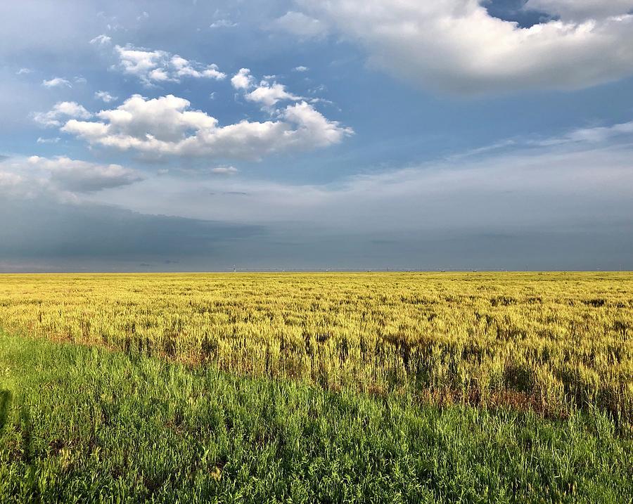 Panhandle Plains Photograph