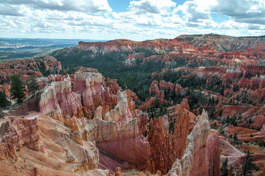 Panorama  from the rim, Bryce Canyon  by NaturesPix