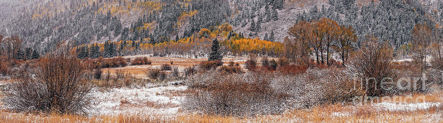 Panorama of Dusting of Snow at NorthStar Nature Preserve - Aspen Pitkin County Colorado by Silvio Ligutti