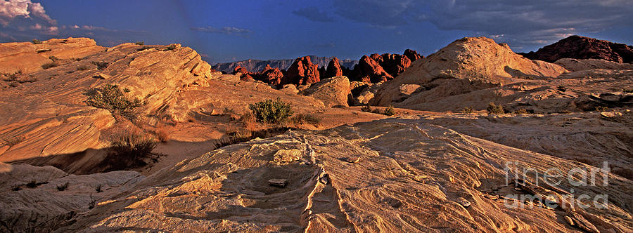 panorama sunset valley of fire state park nevada by Dave Welling