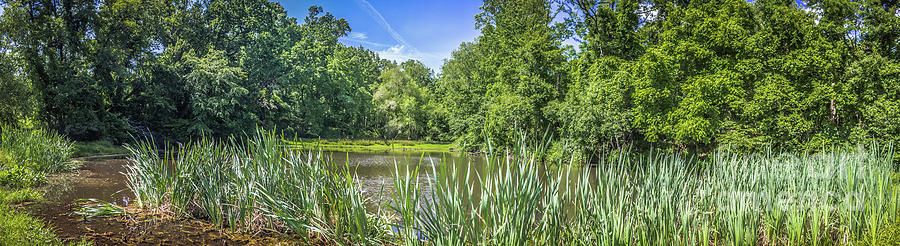 Panoramic Pond View by Colleen Kammerer