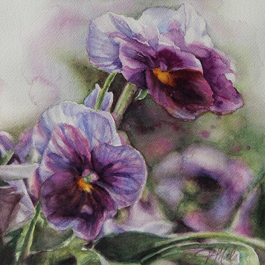 Pansies by Tracy Male