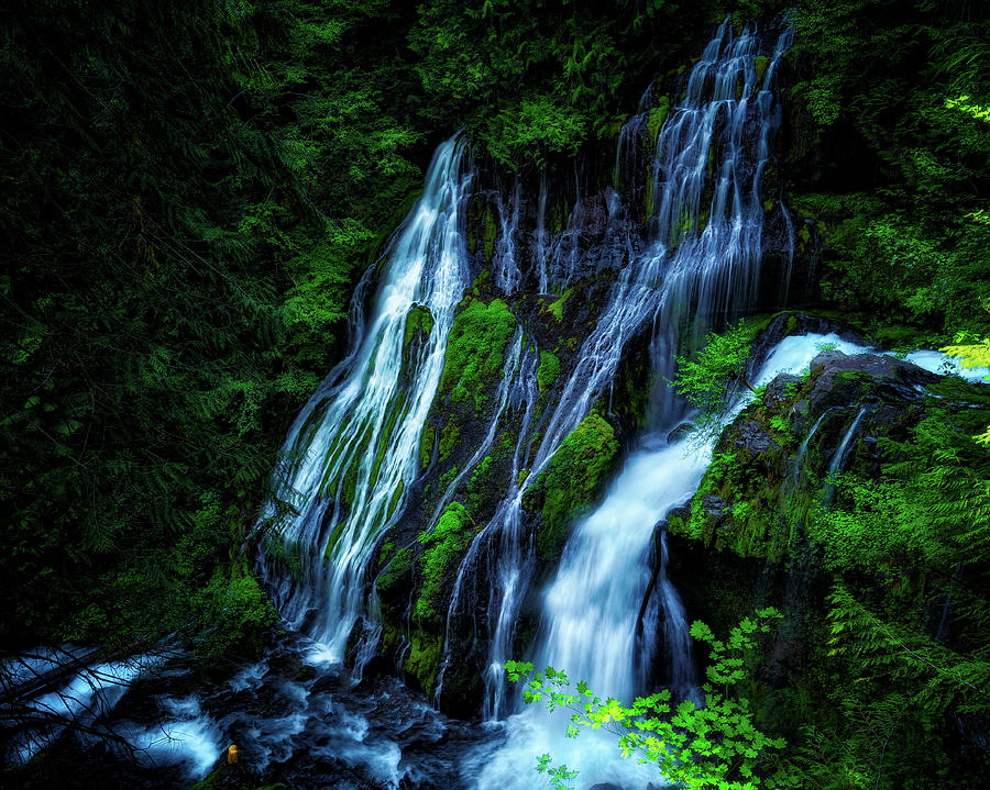 Panther Creek Falls by Thomas Hall