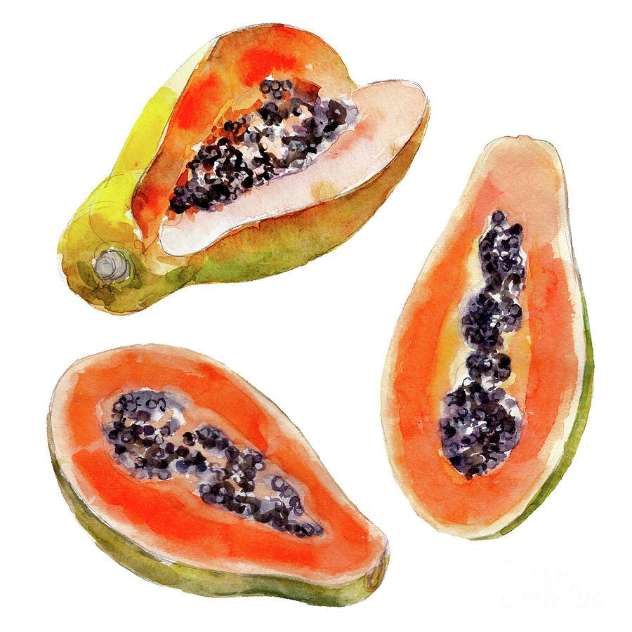 Papaya Fruit Isolated On White Digital Art by Viktor Kashin