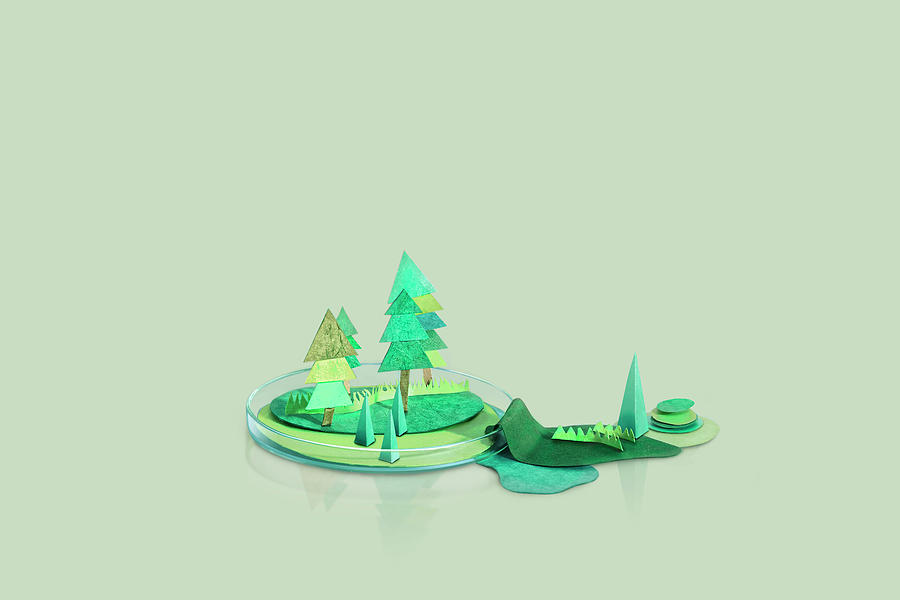 Paper Craft Mountains And Trees On A Photograph by Paper Boat Creative