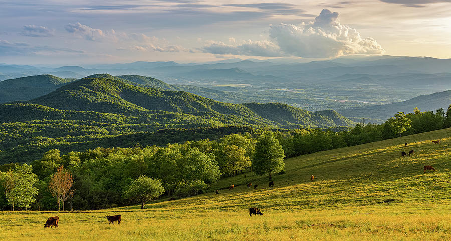 Paradise in the Blue Ridge Mountains by Carl Amoth