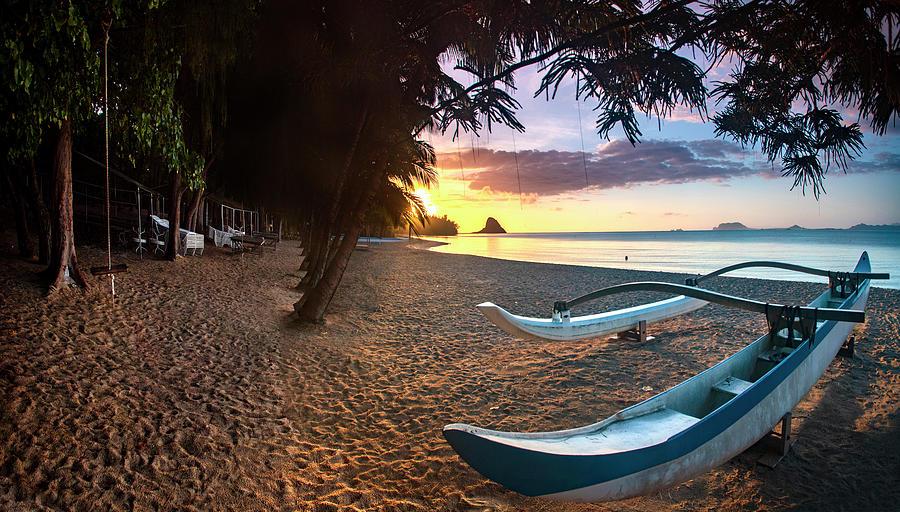 Paradise Island by Sean Davey