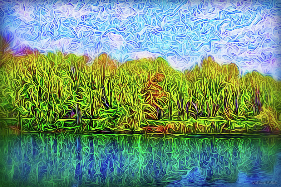 Paradise Reflections by Joel Bruce Wallach