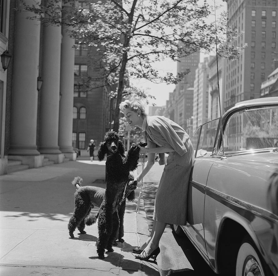 Park Avenue Fashion Photograph by Slim Aarons