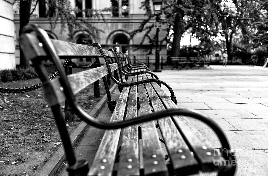 Park Bench View Photograph - Park Bench View In New York City by John Rizzuto