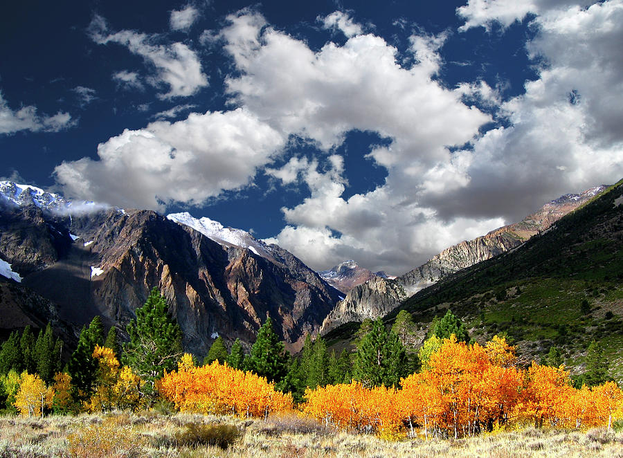 Parker Canyon Fall Colors Californias Photograph by Bill Wight Ca