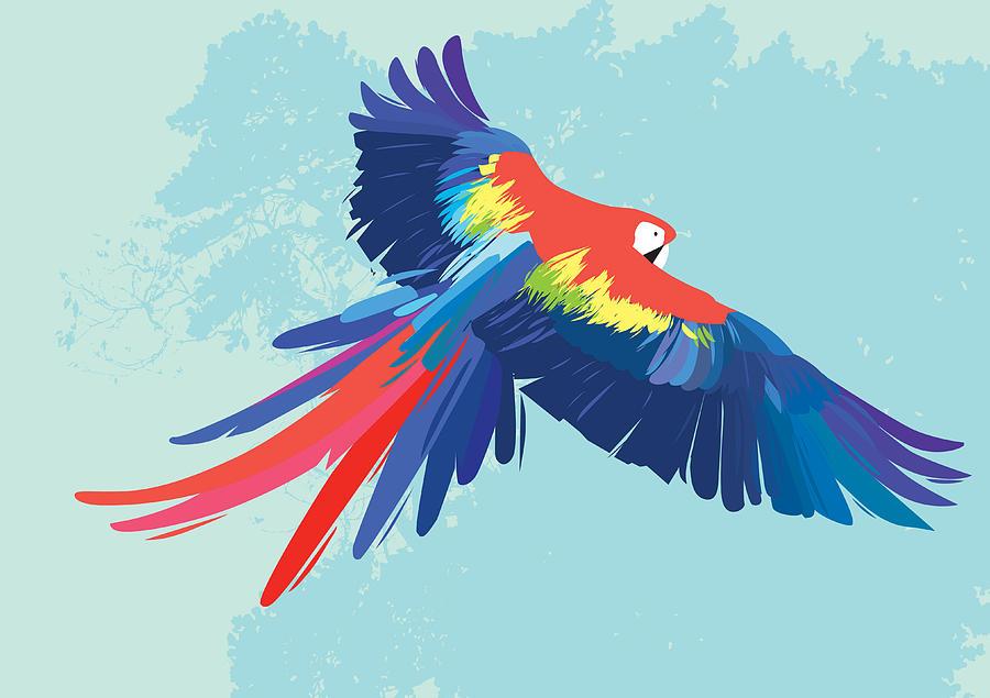 Parrot Flying Digital Art by Rubens Lp
