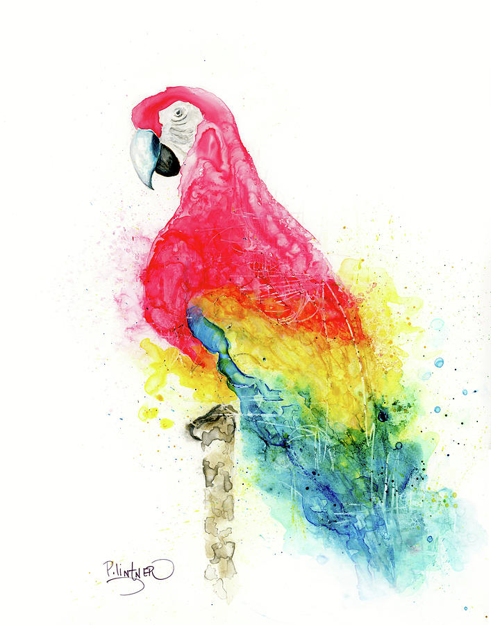 Parrot by Patricia Lintner