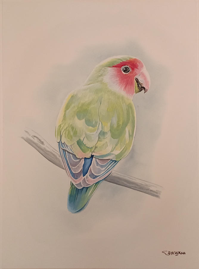 Parrot Painting - Parrot by Said Marie