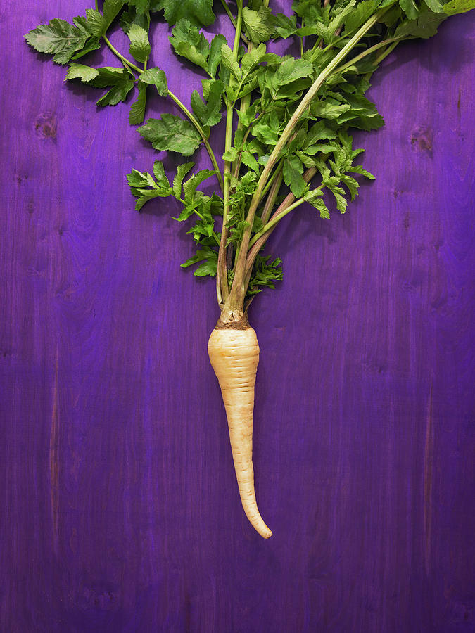 Parsnip Root Vegetable Photograph by James Worrell