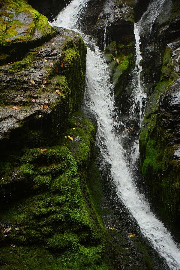 Part of South River Falls by Raymond Salani III