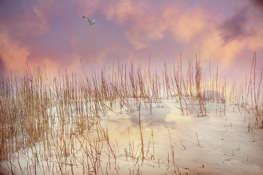 Pastel Sky by John Rivera