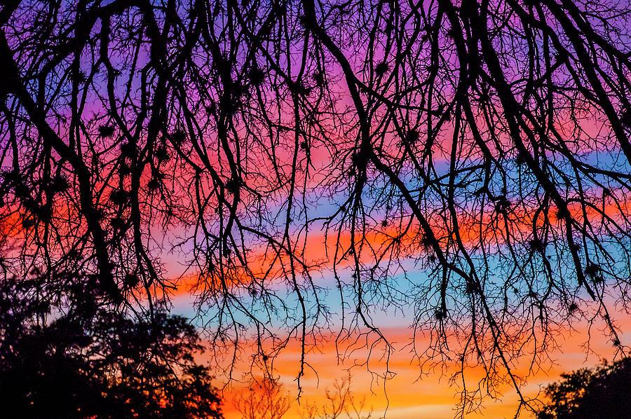 Pastel Sunset Silhouette Photograph