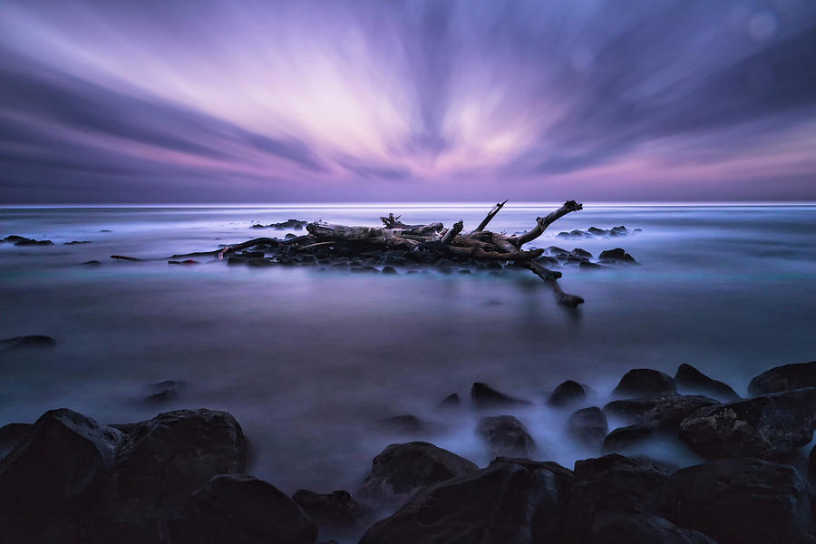 Pastel Tranquility by Jason Roberts