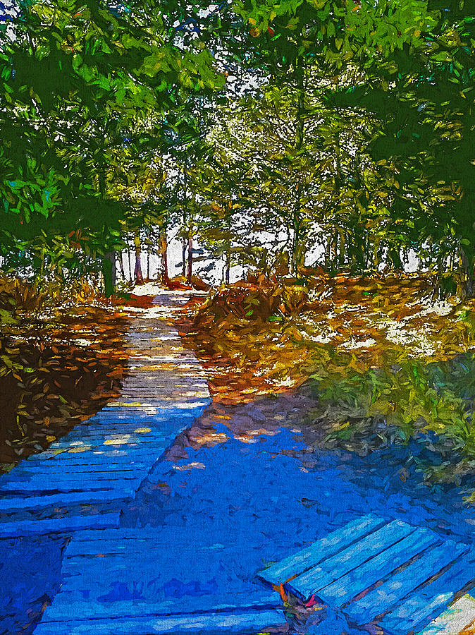 Path 1 by Cliff Guy