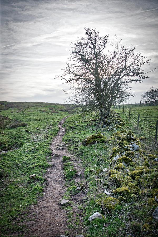 Path around Thorpe Cloud by Scott Lyons
