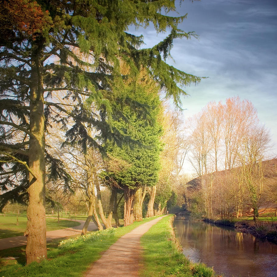 Path Besides Canal In Bute Park Photograph by Christiana Stawski