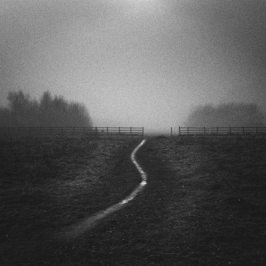 Path In Mist Photograph by Doug Chinnery