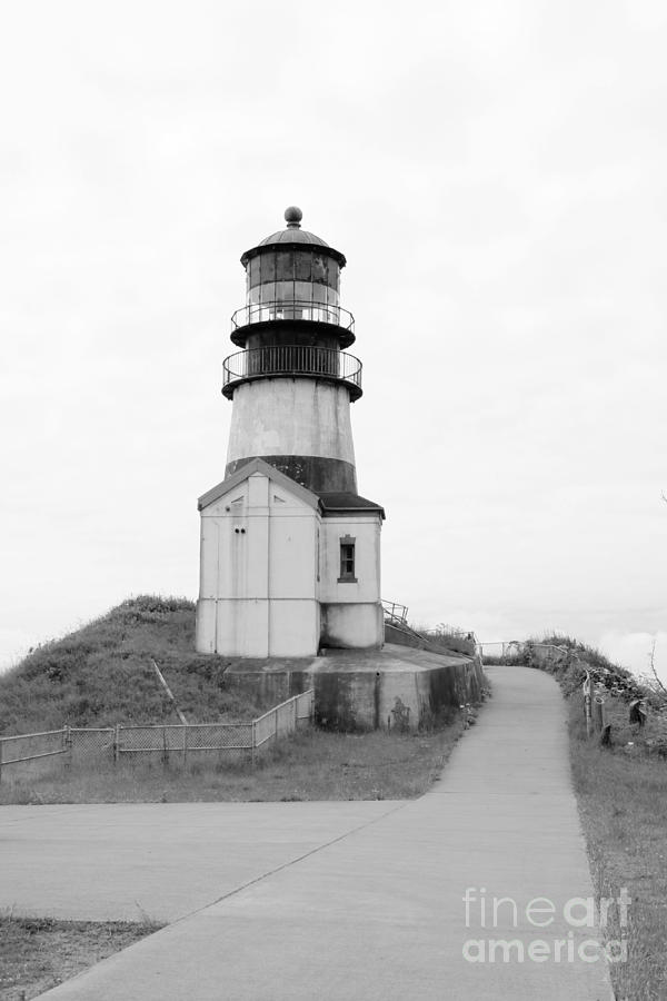 Path to Cape Disappointment Lighthouse BW by Carol Groenen