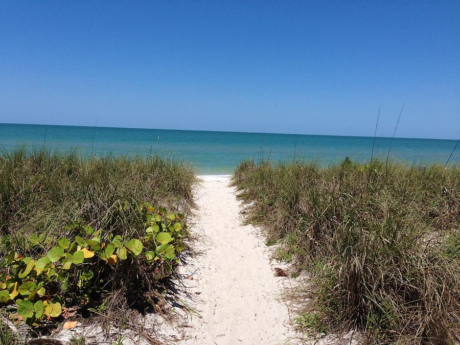 Path Photograph - Path to Paradise by Laura Smith