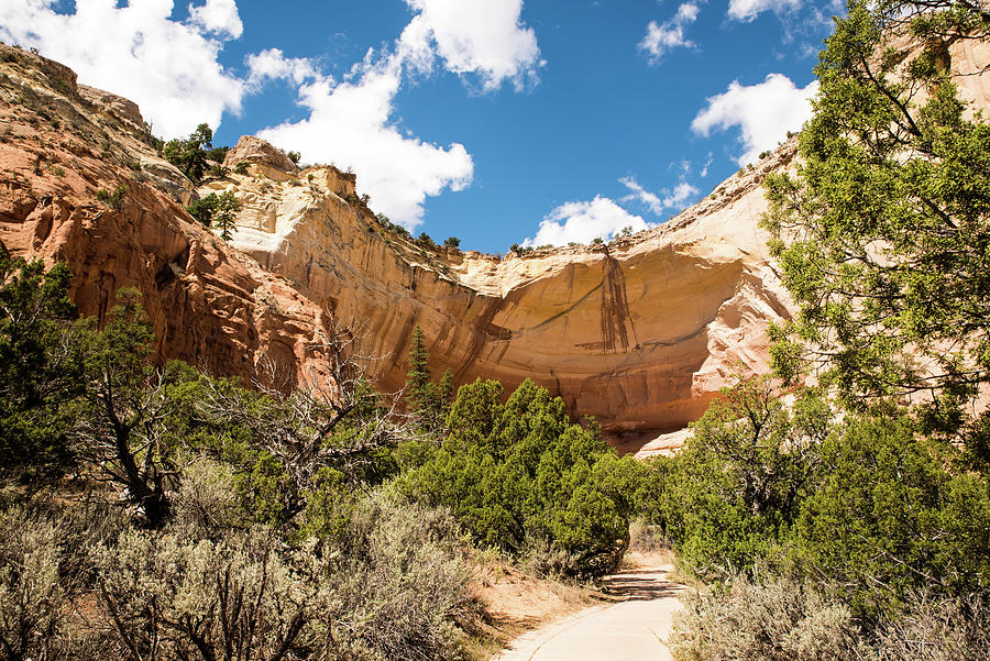 Path to the Amphitheater by Tom Cochran