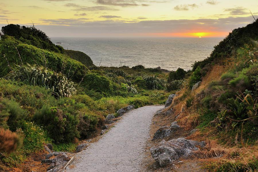 Path To The Sea Photograph by Raimund Linke