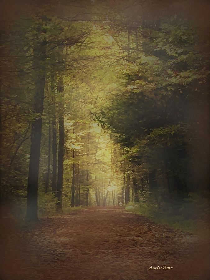 Pathway Into Autumn by Angela Davies