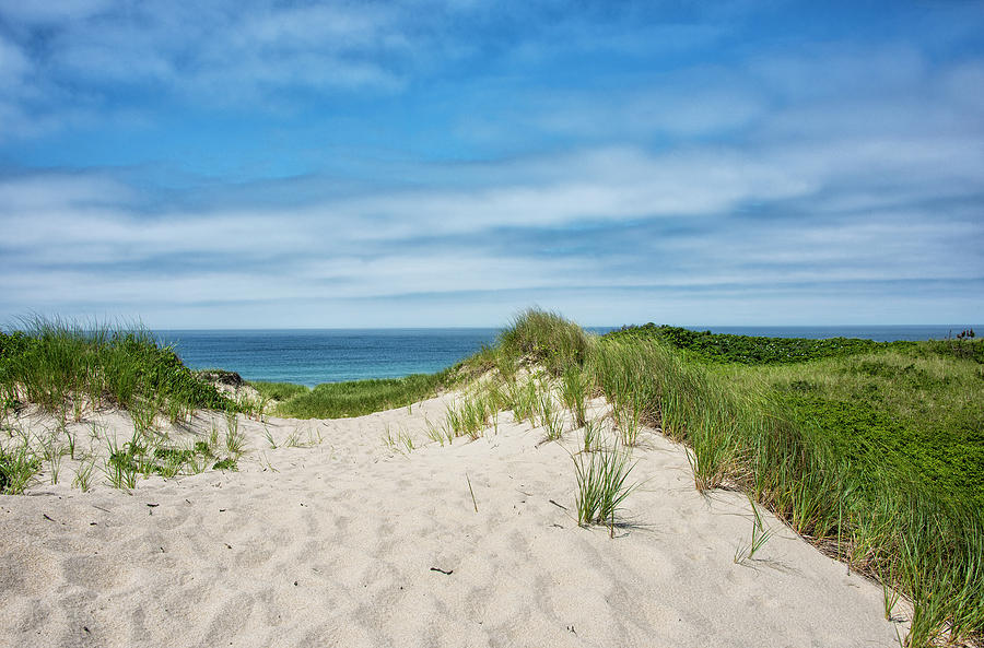 Path Photograph - Pathway To The Beach On Marthas Vineyard by Brendan Reals